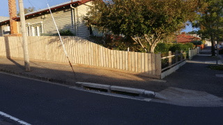 Treated Pine Paling Fence in West Brunswick