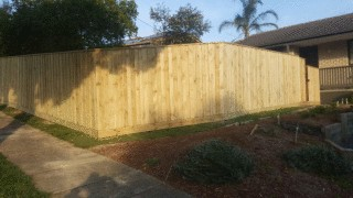 Treated Pine Paling Fence with Capping in Kilsyth
