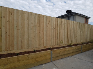 Treated Pine Paling Fence in Burwood