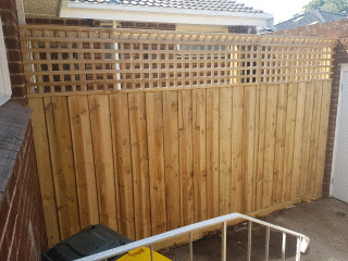 Treated Pine Paling Fence in Canterbury