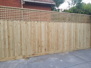Treated Pine Paling Fence in Carnegie